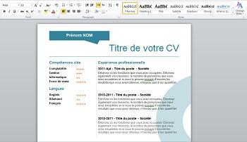 exemple de cv 2015 word