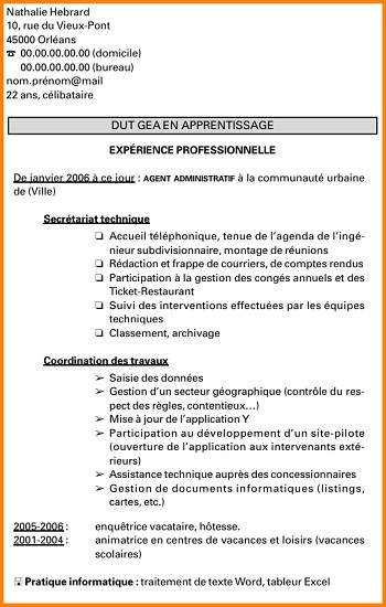 exemple de cv alternance