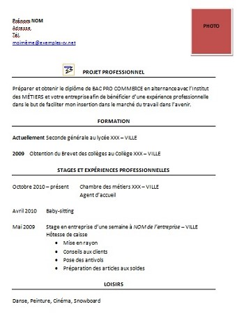 exemple de cv bac pro commerce