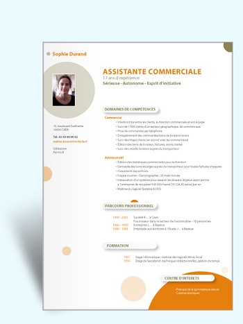 exemple de cv commerce