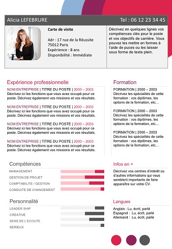 exemple de cv fonctionnel