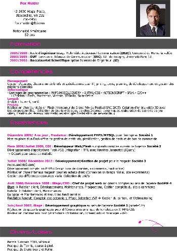 exemple de cv ingenieur informatique