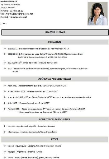exemple de cv licence 2