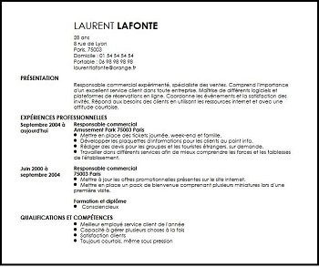exemple de cv responsable commercial