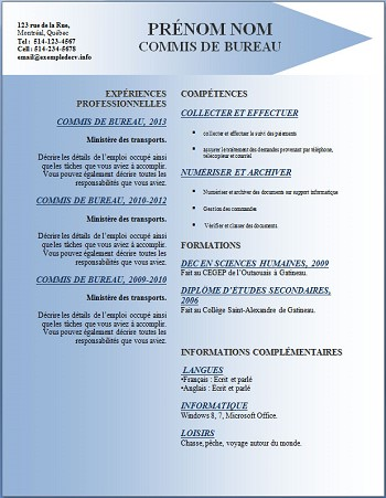 exemple de cv thematique