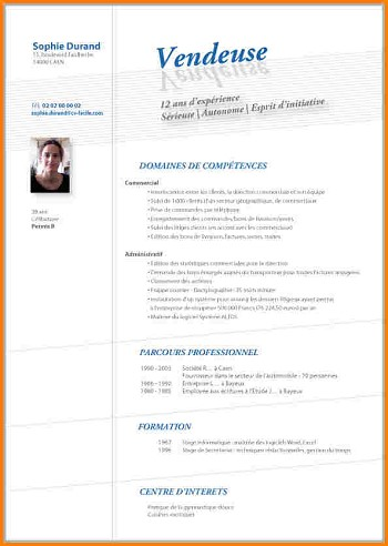 exemple de cv vendeur en magasin