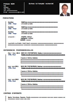 exemple de cv vierge pdf