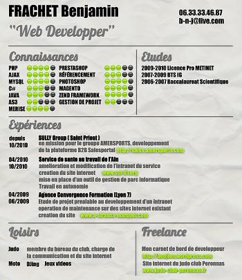 exemple de cv web