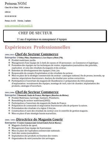 modele de cv 2015 en pdf