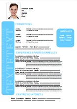 modele de cv moderne pdf