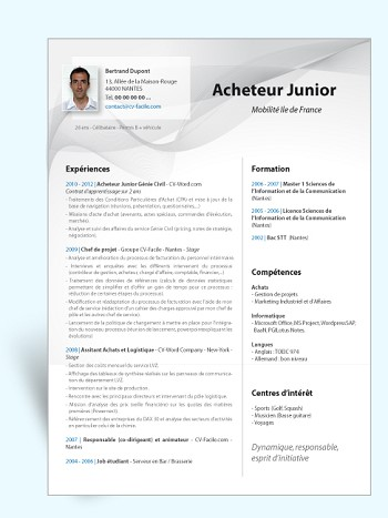 modele de cv pages